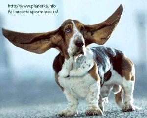 Упражнение на умение слушать